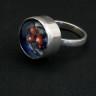 Universe Ring